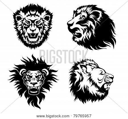 Growling lion tattoo