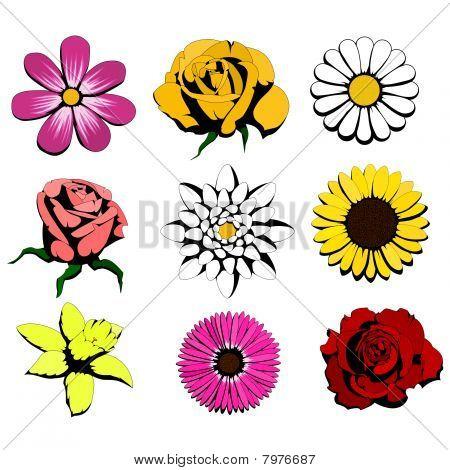 nine flowers