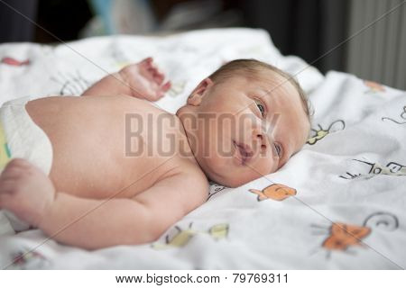 Infant In Baby Cot