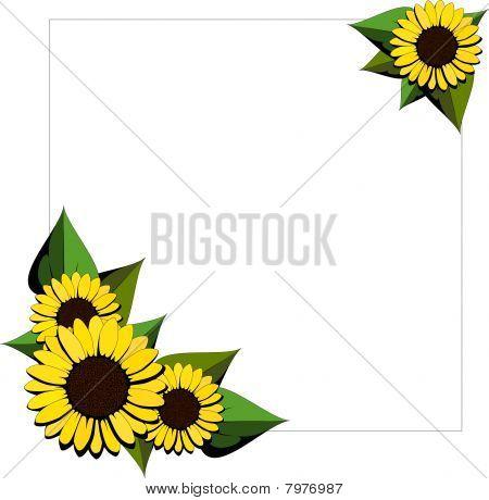 Sunflower cartoon background