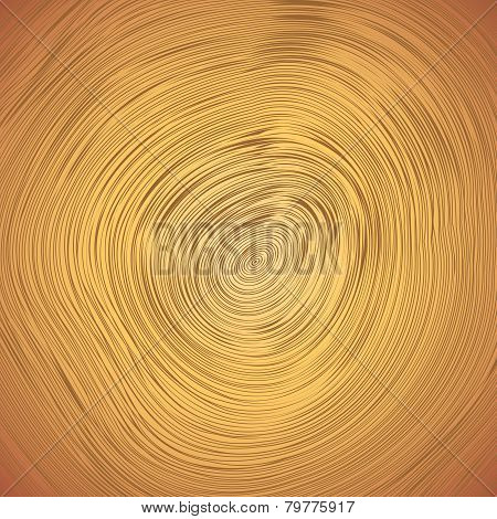 Wood texture of cutted tree trunk.