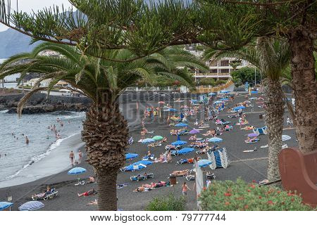 Arena Beach Bellow Palm Trees, Tyenerife, Canary Islands, Spain.