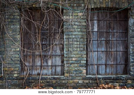 Windows boarded up with boards in abandoned area. Dark colors
