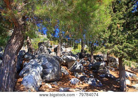 Cave at Crete island