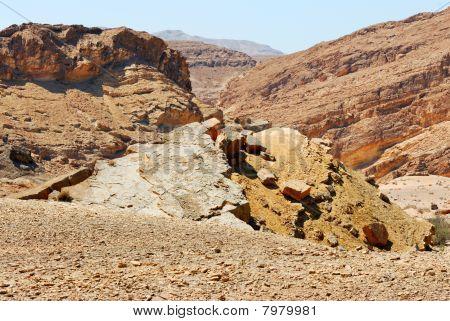 Stones Of Makhtesh Ramon