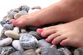 picture of pedicure  - woman feet  - JPG