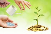 stock photo of helping others  - hands helping each other to nurture a tree growing on golden coins - JPG