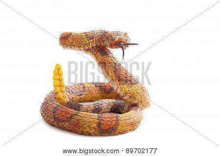 Snake Toy