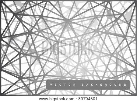 Spiderweb Design