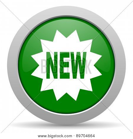 new green glossy web icon