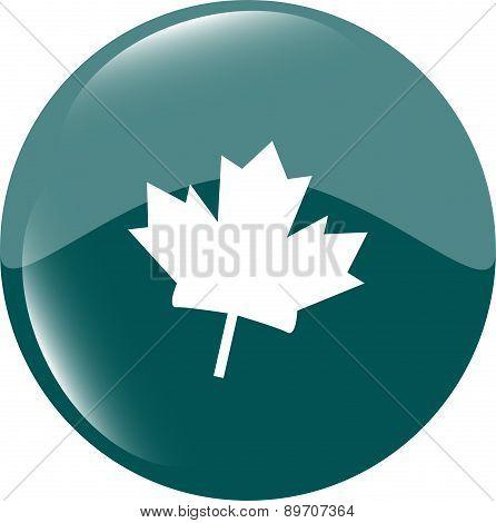 Maple Leaf Icon Glassy Web Button Vector