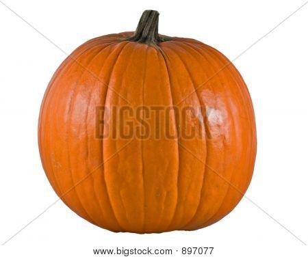 Big Pumpkin Alpha