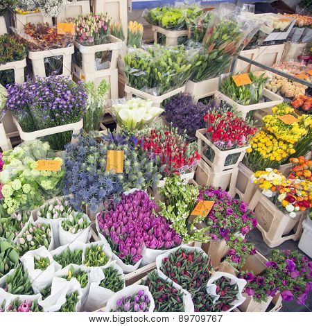 Flowers On Marketplace In The Netherlands