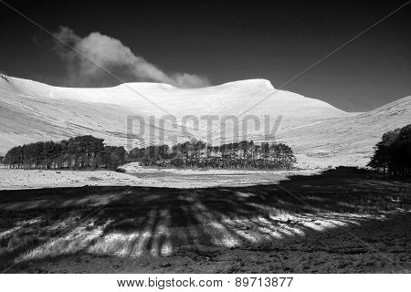 Fresh Winter Landscape Of Snow Covered Mountain Range And Forest In Black And White