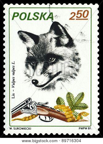 Vintage  Postage Stamp. Fox.