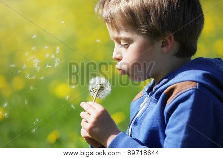 Child blowing dandelion seeds in a meadow concept for new life, wishes and dreams