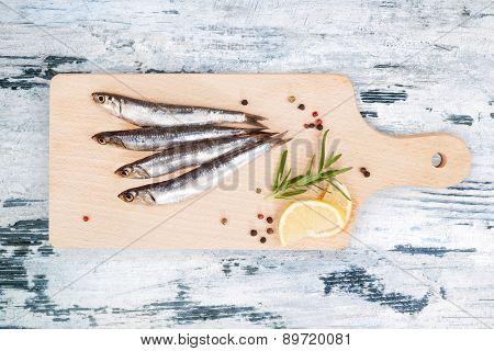Fresh Sardine Fish.