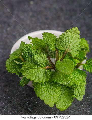 Fresh Lemon Balm Herb .(melissa Officinalis)