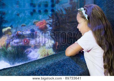 Cute girl looking at fish tank at the aquarium