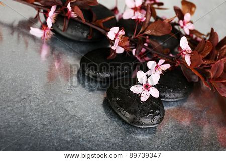 Spa stones with spring flowers on table close up