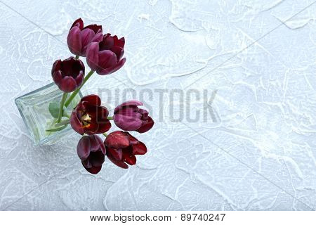 Beautiful violet tulips in glass vase on light background