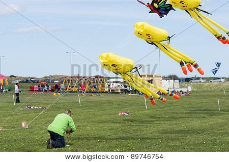 Kites In Flight At Blyth Kite Festival 2015