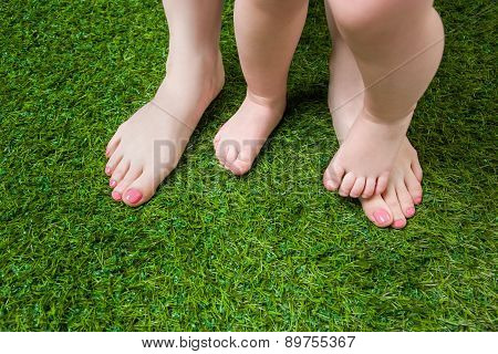 Mother and baby legs standing  on green grass