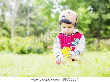 Cute Toddler Boy Plucks Flowers