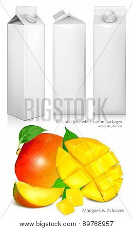 Milk and juice white carton packages. Ripe fresh mangoes. Vector illustration.