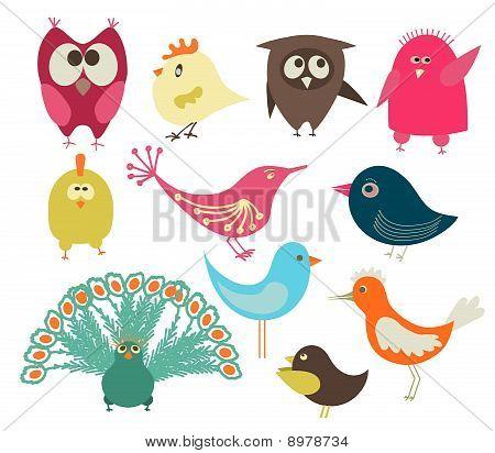 conjunto de pássaros bonitos