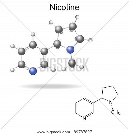 Structural Chemical Formula And Model Of  Nicotine