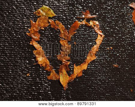 A Heart formed of brown leaves