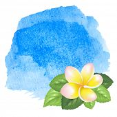 stock photo of frangipani  - Blue sea ocean fresh watercolor background with exotic tropical flowers frangipani - JPG