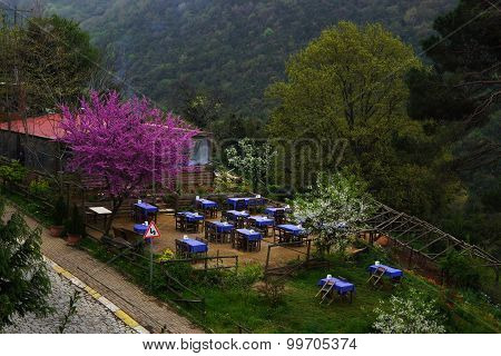 Spring Cafe Open-air In Mountains.
