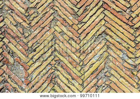 Broken Brown Brick Floor