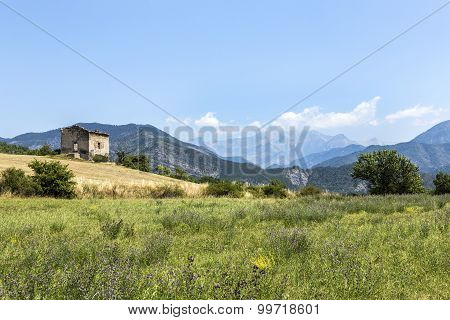 Landscape In The Provence With View To The Alps