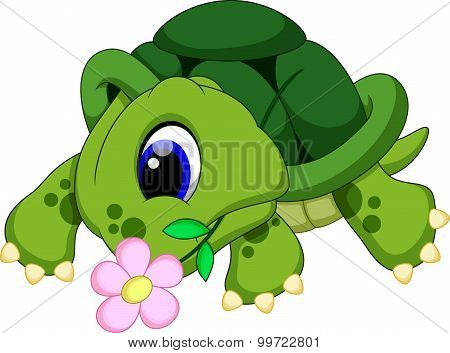 Cute turtle biting a flower