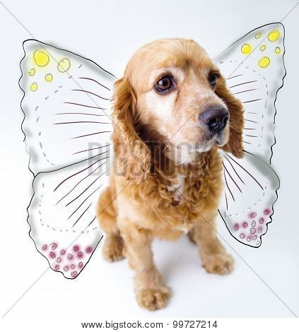 Cute English Cocker Spaniel puppy in front of a white background with butterfly wings sketch