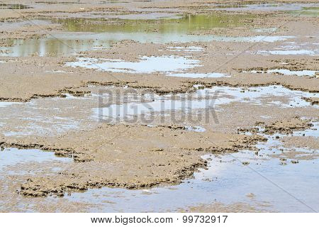 Muddy Ground Pattern During The Low Tide