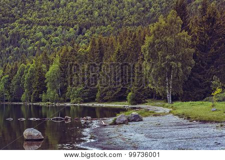 Serene Lake Scenery
