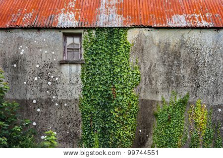 old ivy covered stone building background