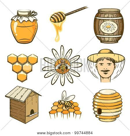 Vector hand drawn beekeeping, honey and bee icons