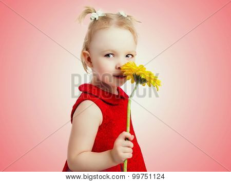 five year old girl with a yellow flower, isolated against studio background