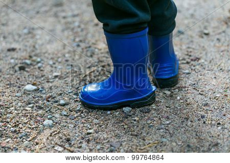 Little Child Legs In Rain Boots