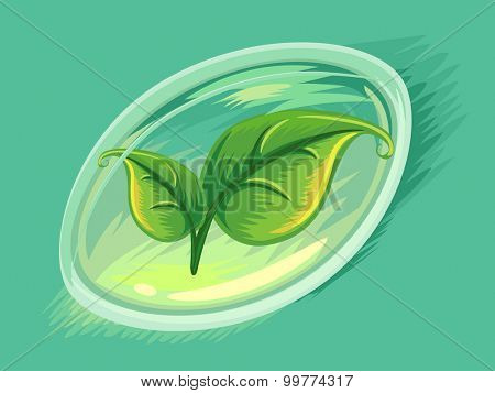 Illustration of Leaves Inside a Soft Gel Capsule