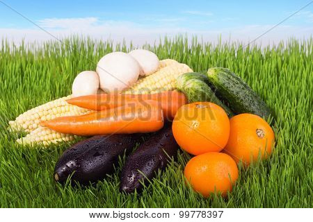 Ripe Vegetables On A Grass Field
