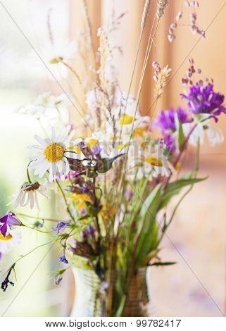 Summer Bouquet Of Wild Flower