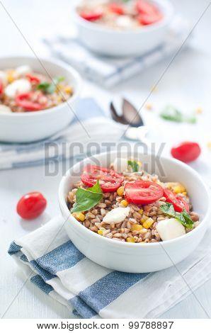 Cold salad of farro with mozzarella tomato and tuna