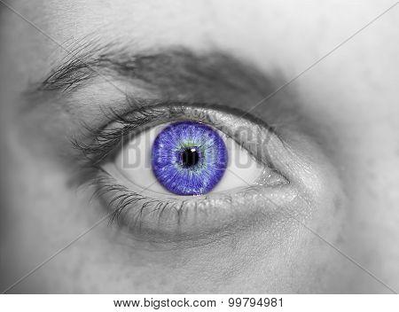 insightful look eyes