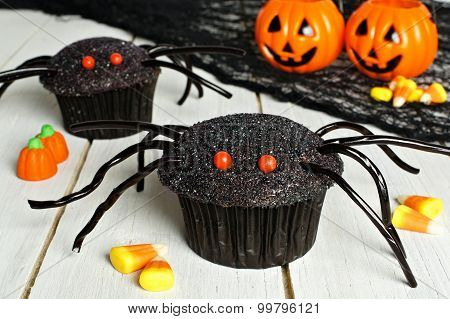 Halloween spider cupcakes with candy on wood background